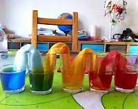 Coloured water flowing through kitchen towel between five glasses
